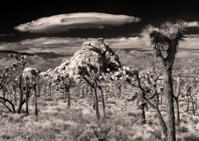 Joshua Tree N.P. Persistent Cloud